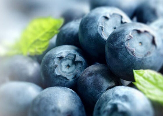 Superfood in pregnancy