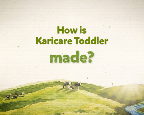 How is karicare toddler made video